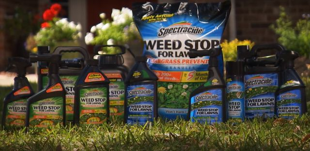 Spectracide Weed Stop for Lawns Reviews